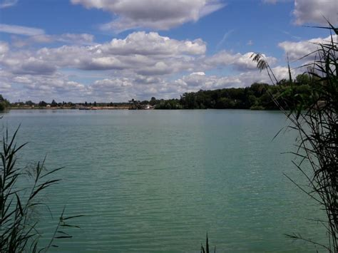 Haselsee (Babenhausen) | ALLE ANGELN