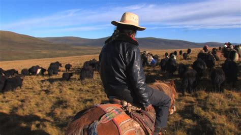 All Seasons Define the Lives of Tibetan Nomads | Video