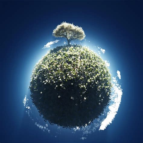 Blossoming Tree On Small Planet Royalty Free Stock