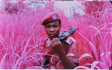 Richard Mosse's 'The Enclave': Stunning Film Captures The