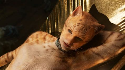 New Cats movie trailer starring Taylor Swift has been