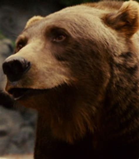 Jerome the Bear Voice - Zookeeper (Movie)   Behind The